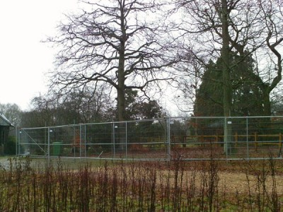 Tree_Protection_and_Heras_fencing_High_Thicket_Road_Farnham